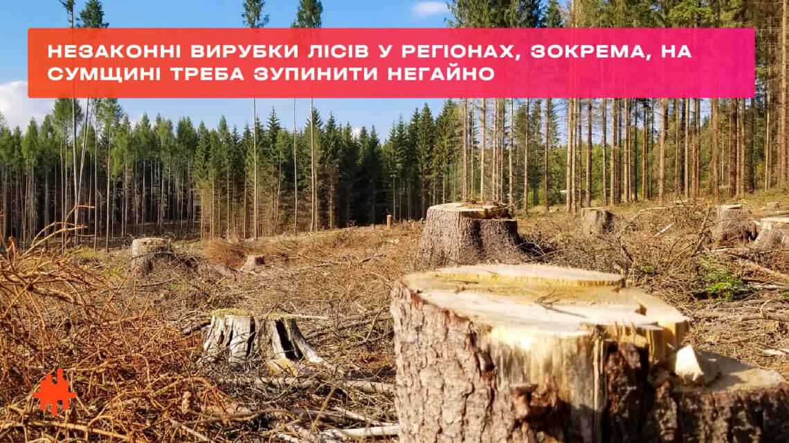 Владі варто думати не лише про висадку 3-х мільярдів дерев, а й про незаконні вирубки лісів, зокрема, на Сумщині, — Леся Василенко